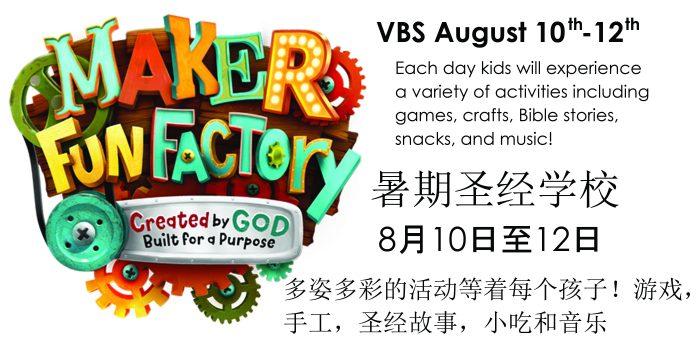 VBS Logo Info